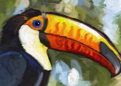 toucan_rimshot_graphix